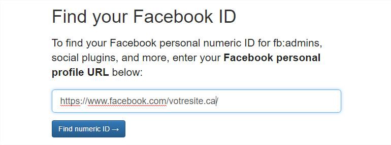 Votre numéro d'identification Facebook